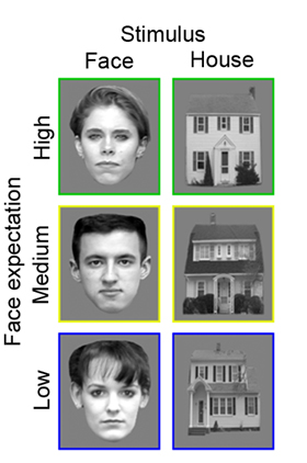 face and house images