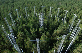 At FACE, computer-controlled valves on rings of towers are administering carbon dioxide to stands of loblolly pines
