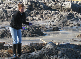 Duke scientists have been sampling the Kingston spill since it happened.