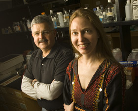 Professors Garnett Kelsoe (left) and Lindsay Cowell combined their expertises, in immunology and statistics, to uncover how genomes of white blood cells adapt to diverse germs.