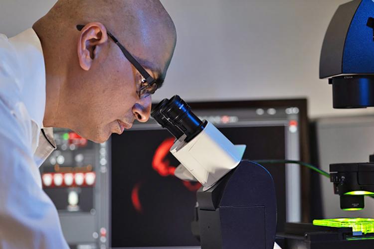 Sandeep Dave, at a microscope