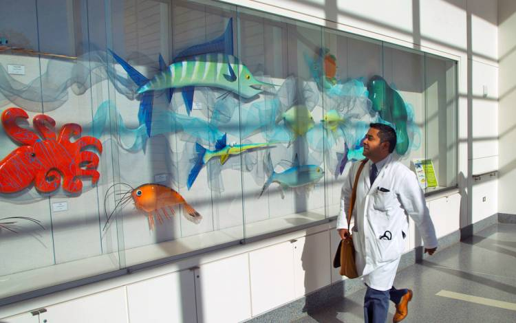 Art on display in the Duke University Hospital concourse.
