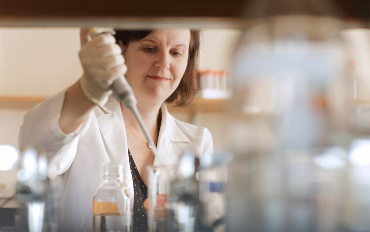 Debra Silver, associate professor for Duke Molecular Genetics and Microbiology, explored new avenues of research thanks to bridge funding from Duke.