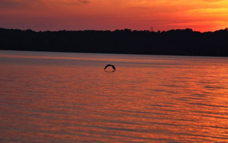 For Joni Harris, Falls Lake provides, among other things, a prime spot to enjoy sunsets. Photo by Joni Harris.