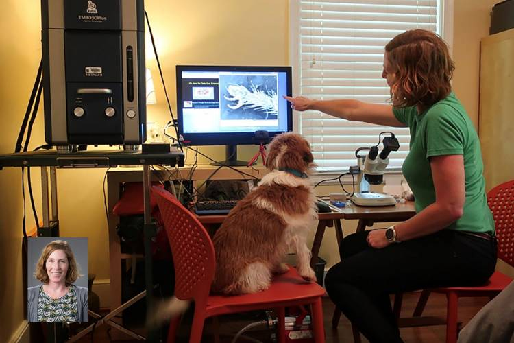 Holly Leddy and June the Science Dog examine a microscope image