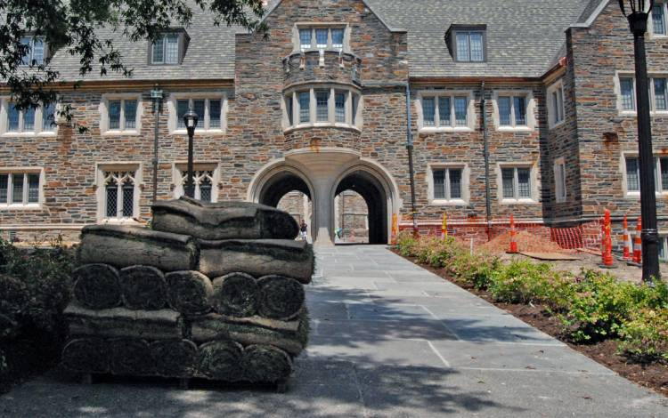 Pallets of sod wait to be installed in the Crowell Quad courtyard. Photo by Stephen Schramm.