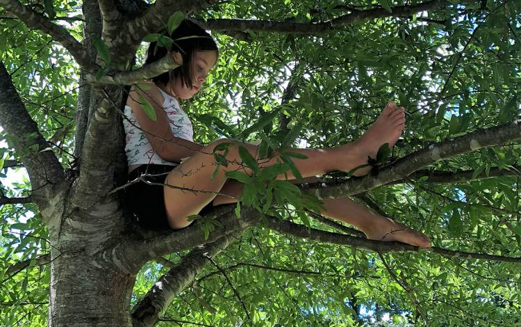 Janelle Burner's daughter, Sophia, enjoys reading while perched in a tree at Stone Mountain State Park. Photo by Janelle Burner.