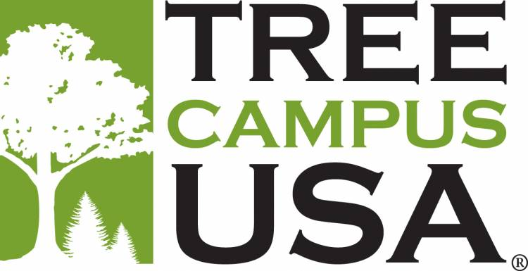 The Arbor Day Foundation launched Tree Campus USA in 2008. Photo courtesy of the Arbor Day Foundation.