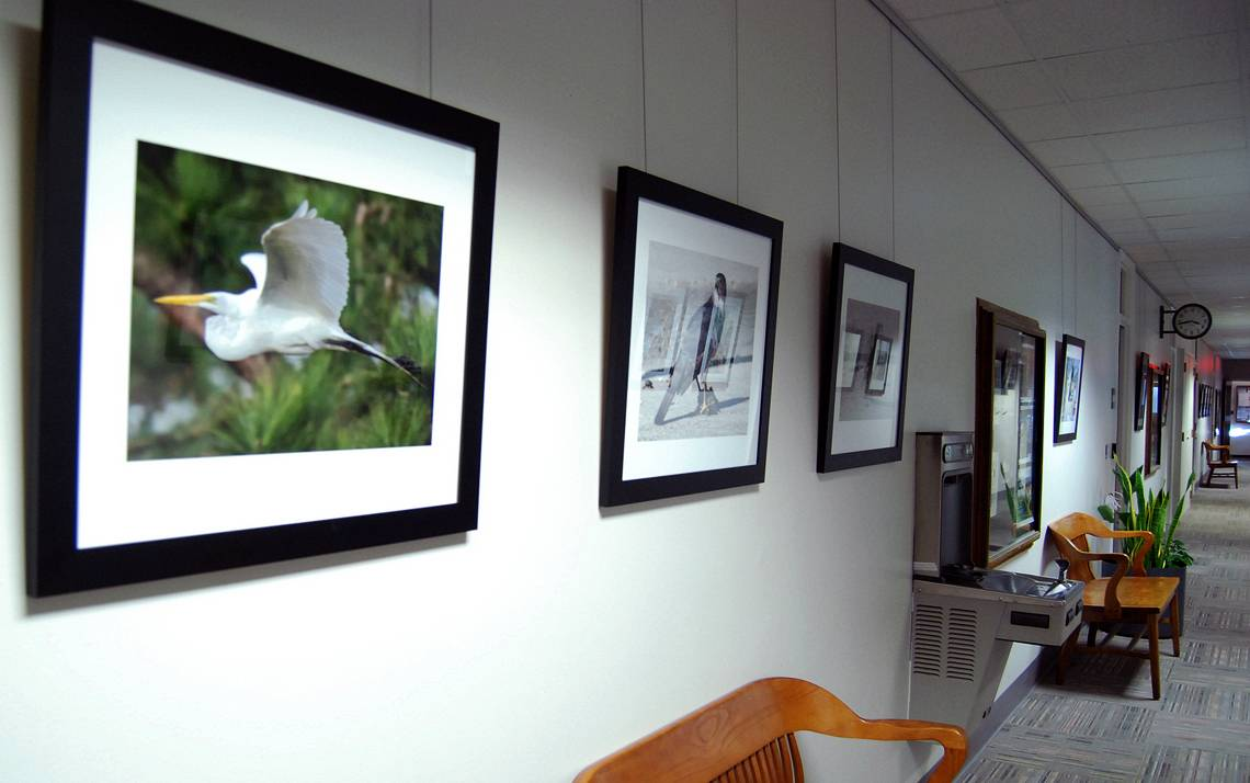 Photography exhibits line the hallways of the Allen Building.