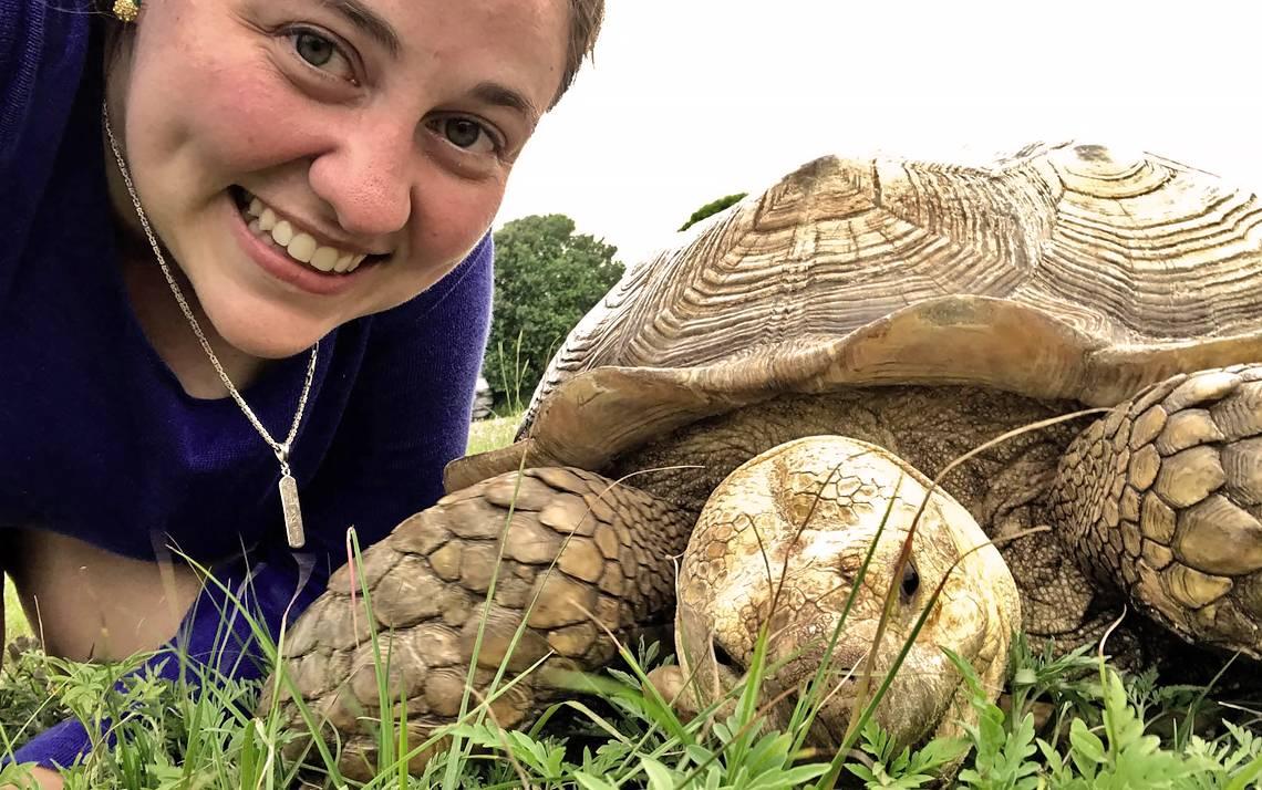 Duke employee Alyssa Brewer meets a sea turtle at Ocean Isle Beach.