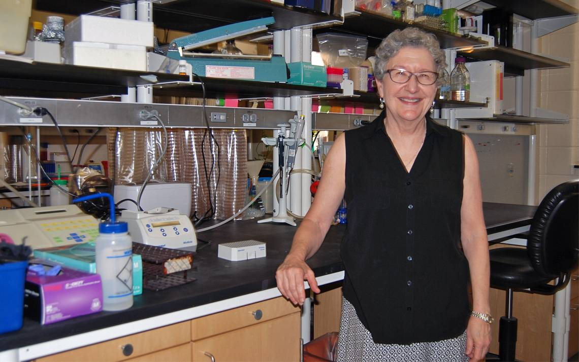 Sue Jinks-Robertson's lab explores the genetic makeup of yeast, searching for clues that could lead to breakthrough cures. Photo by Stephen Schramm.