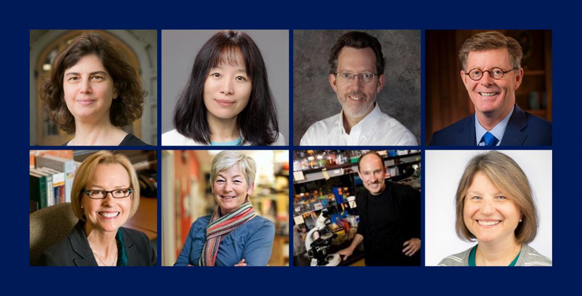 New members of the AAAS: Clockwise from top left: Rachel Kranton, Fan Wang, Richard Mooney, Vincent Price, Sally Kornbluth, Joseph Heitman, Blanche Capel and Geri Dawson.