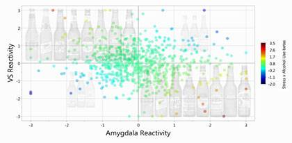 Imbalance in the activation of two brain areas, the ventral striatum (VS on vertical scale) and the amygdala, predicts problem drinking in university students who are dealing with stress. The same two brain areas also predict the number of new sexual par