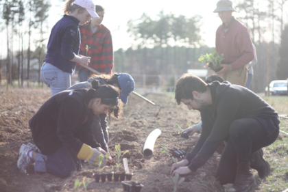 Duke staff and students plant a row at the Duke Campus Farm