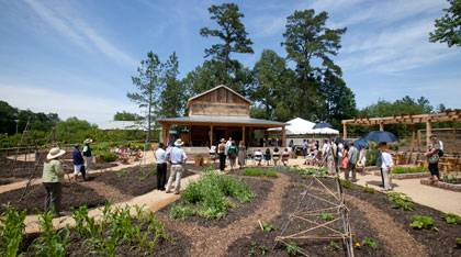 The Charlotte Brody Discovery Garden, dedicated this month, will instruct visitors about healthy eating and ecological practices. Photo by Jared Lazarus / Duke Photography