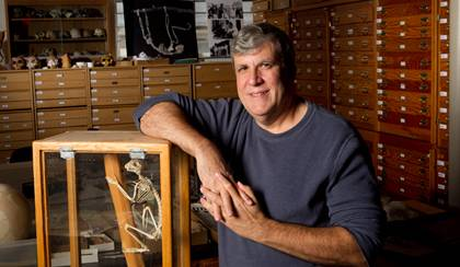 Paleontologist Gregg Gunnell leads a collection of more than 24,000 fossils, many of which provide important clues on primate evolution.  Photo by Duke University Photography