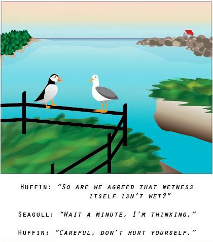 Huffin & Seagull, illustration by Tamberly Ferguson