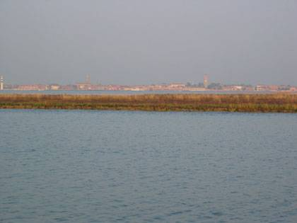A low-lying marsh threatened by sea-level rise in the Venice Lagoon. (Credit: Marco Marani, Duke University)