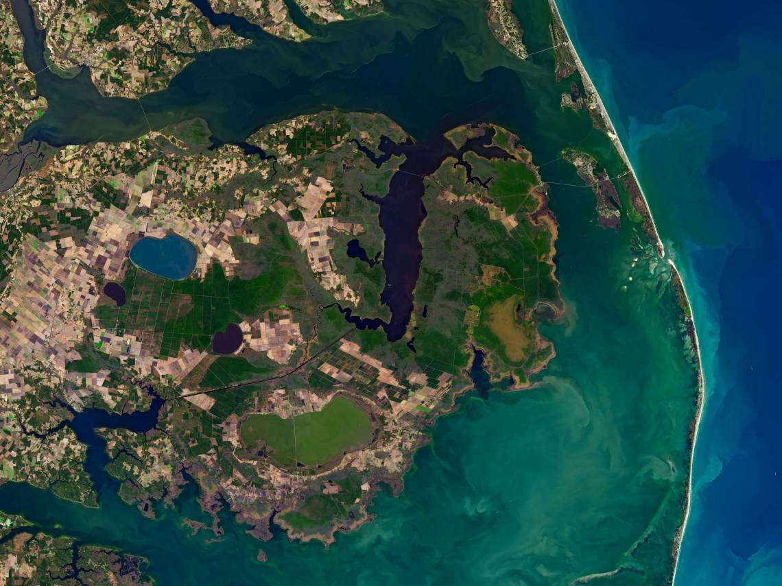 Inland-creeping saltwater is changing U.S. coastal wetlands, and now you can see the effects from space. Credit: NASA / U.S. Geological Survey