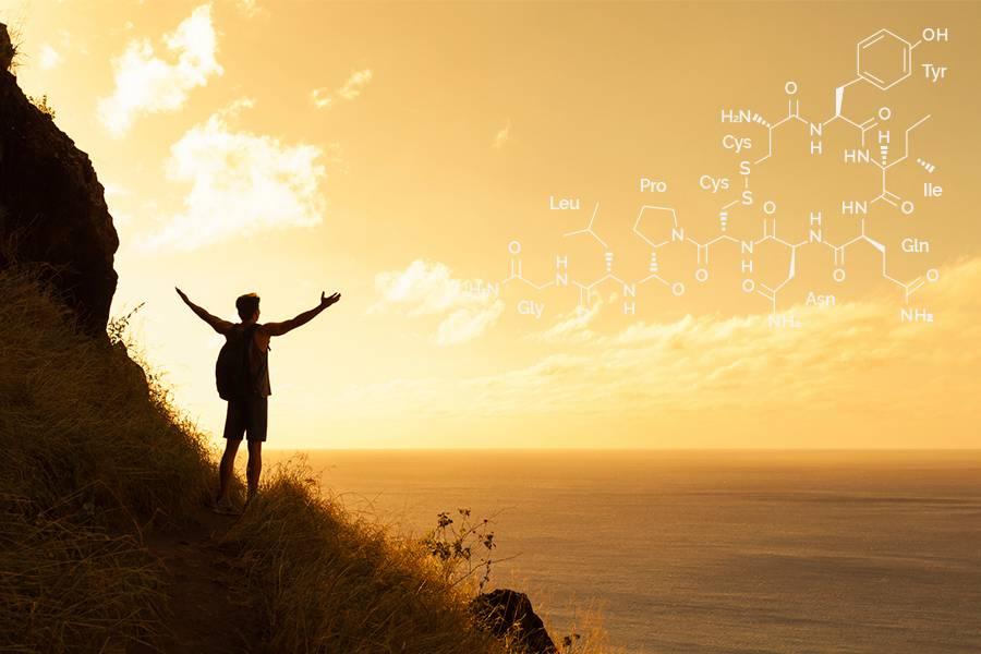 oxytocin supports spirituality