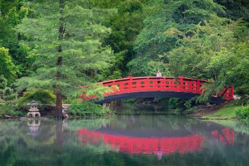 The Meyer Bridge in the Asiatic Arboretum.