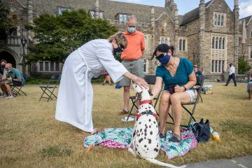A dalmation gets blessed at the Blessing of the animals