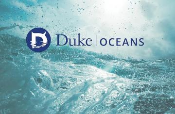 graphic of new interdisciplinary Oceans@Duke group