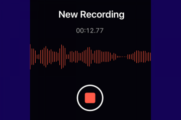 graphic of an audio recording