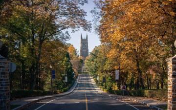 View down Chapel Drive
