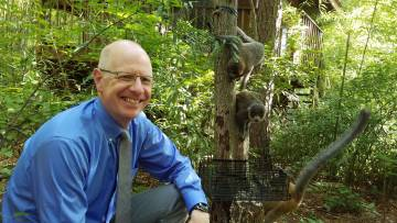 Greg Dye will take over as director of the Duke Lemur Center, the world's largest and most diverse collection of lemurs outside their native Madagascar. He will succeed biology professor Anne Yoder, who led the center for 12 years.
