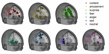 A Duke team has mapped the distinct patterns of brain activity that correspond to seven different emotional states. The brain anatomy presented here is an average of data from 32 study subjects.  (Credit: Philip Kragel, Kevin LaBar, Duke University)