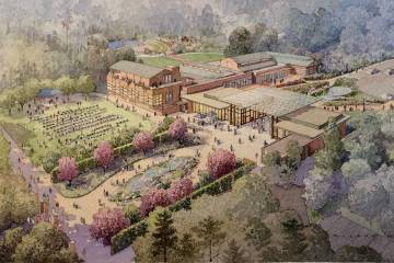An artist's representation of a new performance lawn and expanded indoor event hall.