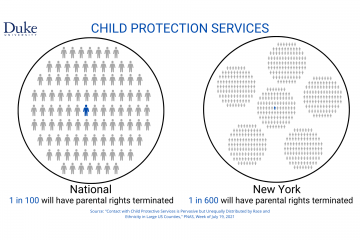 parental rights graphic