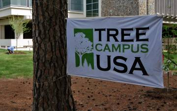 A Tree Campus Higher Education banner hangs near where new trees were being added by Gross Hall. Photo by Stephen Schramm.