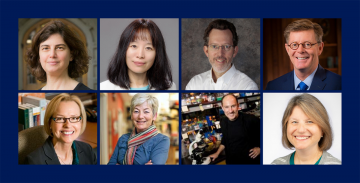 New members of the AAAS: Clockwise from top left: Rachel Kranton, Fan Wang, Richard Mooney, Vincent Price, Sally Kornbluth, Joseph Heitman, Blanche Capel and Geri Dawson.