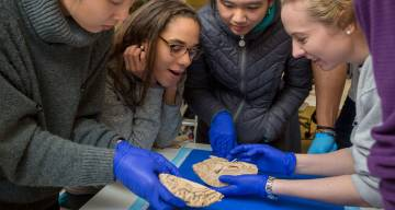 for the first time, students hold a human brain in their hands