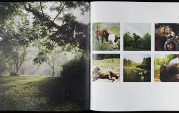 Tom Rankin and Jill McCorkle, Goat Light (Horse & Buggy Press, 2021)
