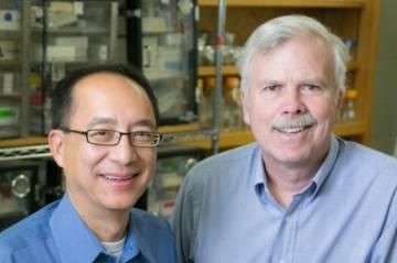 Donald Lo and Albert Baldwin