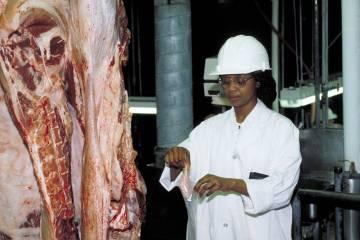 Gabriel Rosenberg: The Meat Industry's Bestiality Problem
