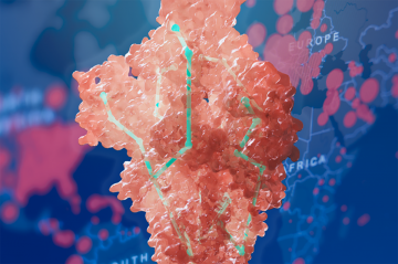 animation of a virus