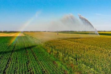 High Plains grain farm