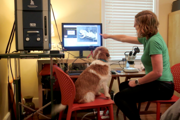Holly Leddy hosts the weekly 'Take-Out Science' show from her guest bedroom, featuring a scanning electron microscope and trusty assistant June the science dog